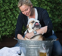 Woman bathing dog while wearing actiwatch